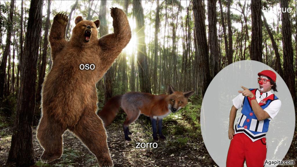 Hábitat de los animales terrestres - bosque, zorro, oso